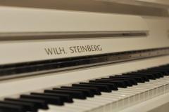 wilh-steinberg-P118_2