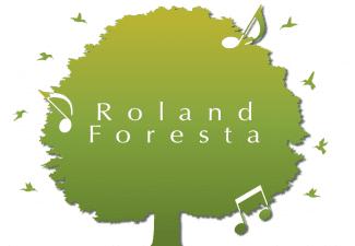 Ciampi Pianoforti e centro Roland foresta